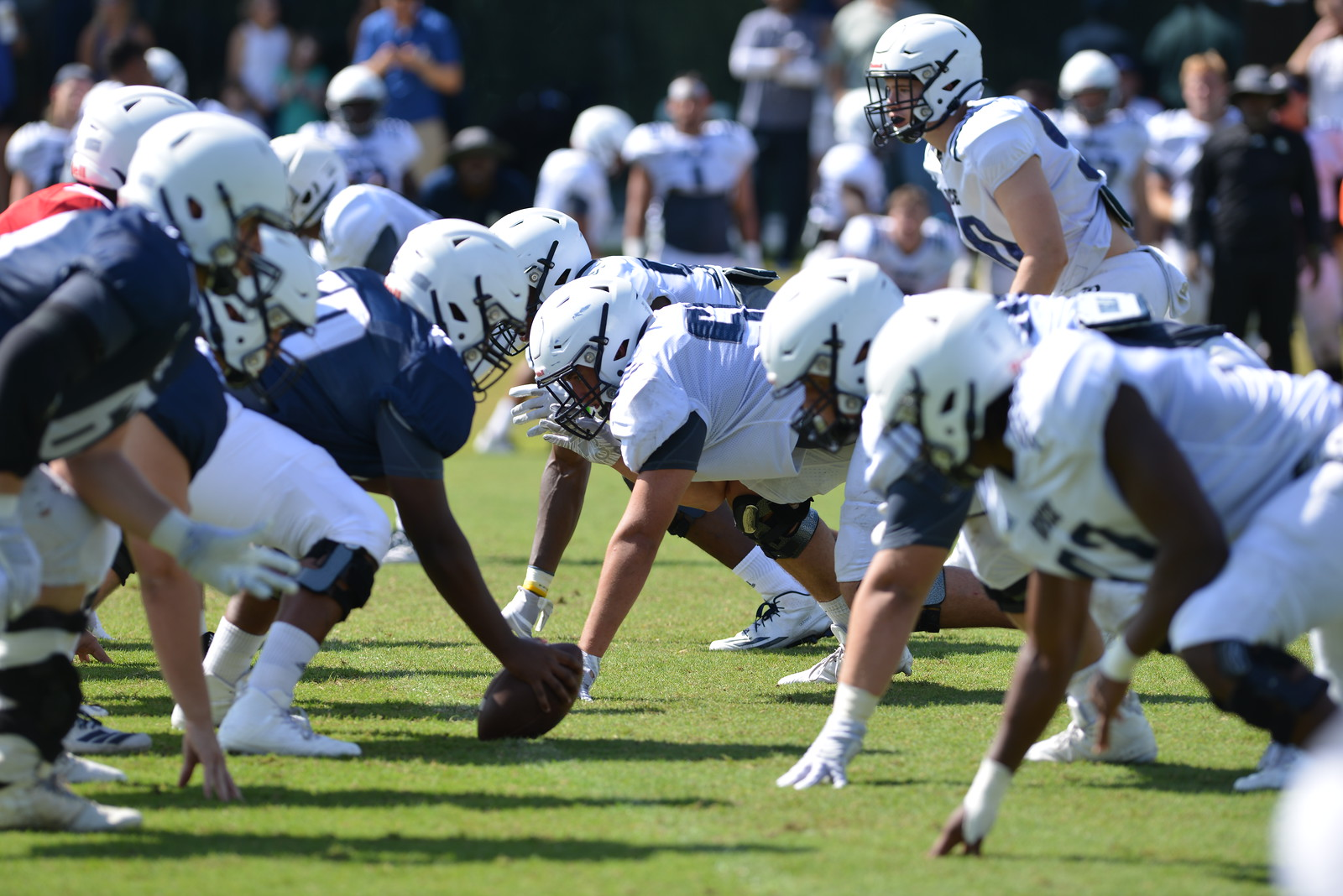 Rice football, offensive line, defensive line